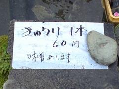 160きゅうり.jpg