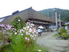 103花咲く.jpg